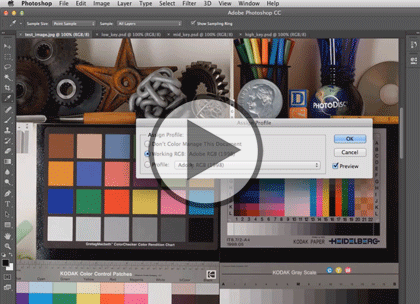 Photoshop CC In Depth, Part 4: JPG, GIF and PNG Trailer