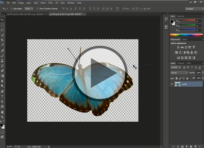 Photoshop CC, Part 2: Organizing & Selection Tool